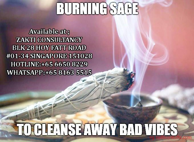 second hand/new: Zakti Consultancy White Sage Leaves and Smudge Bundles