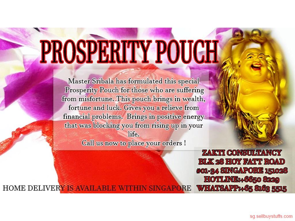 second hand/new: PROSPERITY POUCH