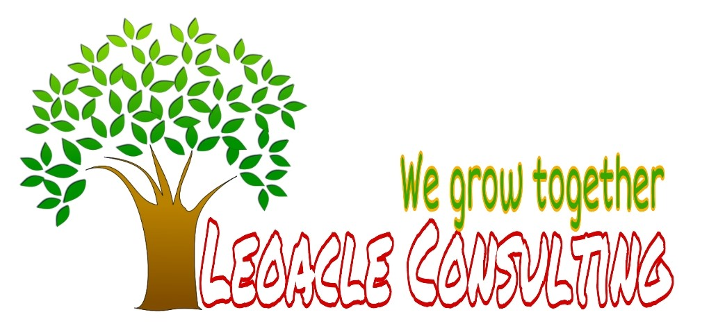 second hand/new: Leoacle Consulting